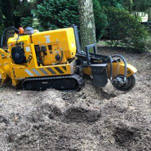 stump-removal-kingston2